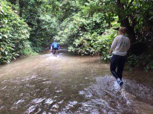 Jungle trekking i Vietnam